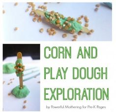 Sensory Activity of the Week: Corn Play Dough Exploration- pinned by @PediaStaff – Please Visit ht.ly/63sNtfor all our pediatric therapy pins