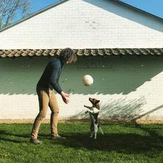 ...FEATURE YOUR FLYING FRIENDS....#flyingjacks Thanks to @jackrussell.jimi ________ #jackrussell#jackrussellterrier#jrt#terrier#terriers#dogs#hund#doglover#dogoftheday#doggo#puppy#jump#jumpingdog#leapingdog#flyingdog