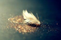 glitter feather.
