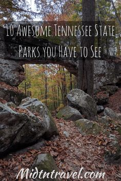 """Tennessee's State Park system is incredible! There are 56 awesome parks, along with multiple """"State Natural Areas"""". All of them are worth visiting, and provide some excellent opportunities for family entertainment. The best part about it, all of the parks Places To Travel, Places To See, Travel Destinations, The Places Youll Go, Camping Places, Tennessee State Parks, Tennessee Vacation, Tennessee Camping, East Tennessee"""