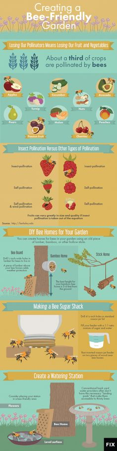 How to Create a Bee-Friendly Garden by berkeley.edu via fix.com #Infographic #Gardening #Bees