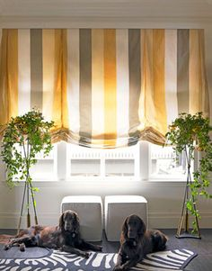 roman shades for the wide windows No Sew Curtains, Home Curtains, Curtains With Blinds, Roman Blinds, Stripe Curtains, Valances, Kitchen Curtains, Custom Window Treatments, Window Dressings