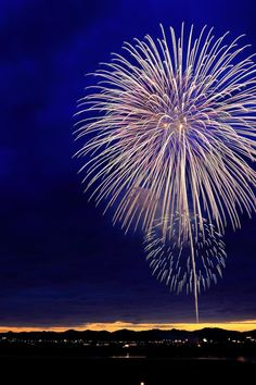 Free stock photo of firework, new year's eve, new year, sylvester