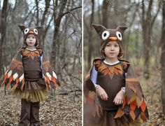 Homemade Hooty Owl Costume