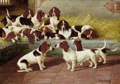 Uma matilha de bassets, 1894 Valentine Thomas Garland (Inglaterra, 1868 – 1914) óleo sobre tela, 41 x 56 cm