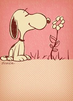 stop and smell the flowers---Snoopy