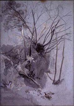 John Ruskin I Tree Studies I ca. 1845-55