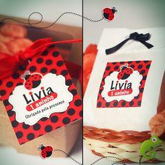 http://www.lizartfestas.com.br/categoria/joaninha.html