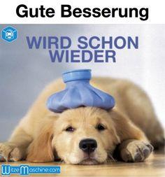Gute Besserung - Kranker Hund - Funny dog