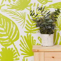 Palms Removable Wallpaper