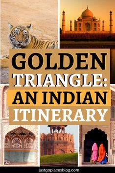 A Golden Triangle of India tour covers 3 cities (New Delhi, Agra, Jaipur) in North India. These cities create a triangular shape on a map, hence the name the Golden Triangle of India. An Indian Golden Triangle tour though is intense. I would totally sugge Agra, India Travel Guide, Asia Travel, Travel Tips, Travel Destinations, Travel Stuff, Travel Ideas, Jaipur, New Delhi