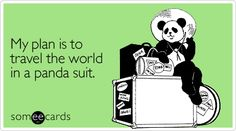 My plan is to travel the world in a panda suit.
