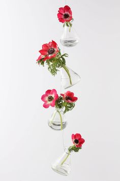 Love these vases from Anthro