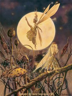 """Cobweb"" David Delamare 2003 #fairies"