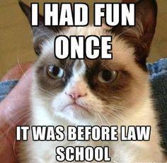 Law School Procrastination