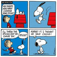 Snoopy and the Peanuts gang. likes. Peanuts Cartoon, Peanuts Snoopy, Peanuts Comics, Schulz Peanuts, Snoopy Cartoon, Snoopy Comics, Ewok, Charles Shultz, Snoopy Quotes