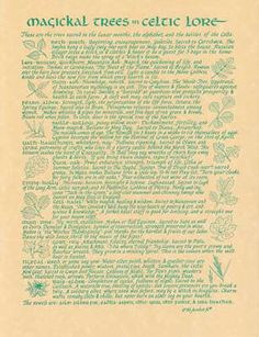 Our Celtic Trees parchment is perfect for those who follow a Celtic tradition, someone who is a hedge witch, a green witch or those who find interest in old lore. This parchment lists trees sacred to