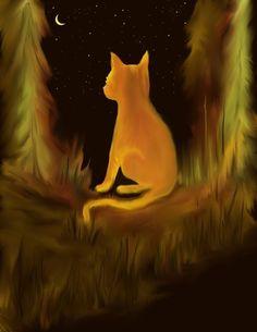 Harvest Moonlight Kitten