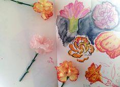 Sketchbook Peek 2   Hayley Holden #sketchbook #drawing #flowers