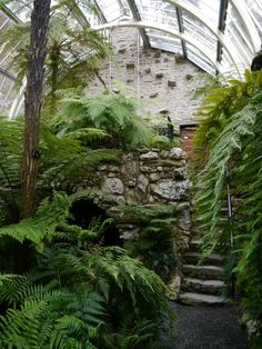 House Remodeling Is Residence Improvement Benmore Botanic Gardens Victorian Fernery. Dunoon, Argyll In The Cowal Peninsula. Victorian Greenhouses, Victorian Gardens, Greenhouse Plans, Buy Greenhouse, Garden Features, Plantation, Glass House, Tropical Garden, Indoor Garden