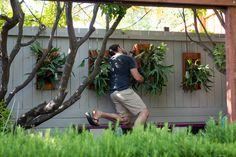 See the world through plants. Learn how to garden indoors and out — from backyard fruit trees to houseplants. Staghorn Plant, Staghorn Fern Mount, Outdoor Plants, Air Plants, Tropical Greenhouses, Farm Gardens, Garden Farm, Side Garden, Vertical Gardens