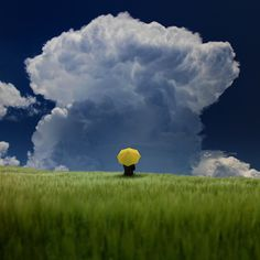awesome thunderhead, yellow umbrella better get the heck outta there...
