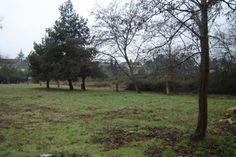 Terrain constructible Gironde Castillon-la-Bataille