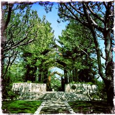 Frank Lloyd Wright's Wayfarers Chapel in Palos Verdes, California Wayfarers Chapel, California, 45 Years, Frank Lloyd Wright, Till Death, New Image, Amazing Things, Winter Holidays, Barns