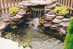 Small Garden Ponds And Waterfalls | Ponds Watergardens and Waterfalls by Forever Green