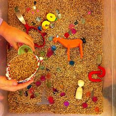 wheat berries - Photo by tinkerlab - use for a western theme sensory box