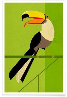 Tucan als Premium Poster von Dieter Braun   JUNIQE
