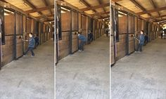A hilarious video shows a young boy playing tug of war with a steed in a Connecticut barn. Whenever he pulls backwards the animal hauls him forward. But wait until you see its size...