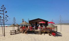10 of the best beach bars in Portugal according to The Guardian 14-08-2017 | With cold beer, caipirinhas and great seafood, these bars, from the Algarve up to Porto, are as hot, bright and breezy as the stunning Atlantic coastline itself Photo: Bordeira Beach Bar, Costa Vicentina, south-west Alentejo