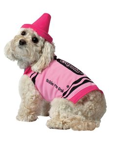 a super cute pink option for your little girl and they have a blue option cute dog costumespet