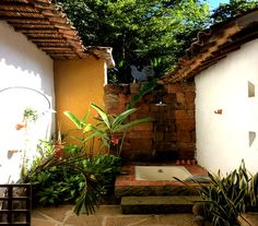 Casa del Gallo Luz Natural, Patio Interior, Outdoor Decor, Plants, Home Decor, Terrace, Facades, Barichara, Traditional Homes