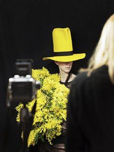 Annett Kuhlmann Marsano bloemen. Geel, Yellow, Bloemen, Flowers.Annett Kuhlmann Marsano bloemen