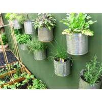 Small Vegetable Garden Ideas | gardening ideas vegetable garden design for your backyard garden ideas ...