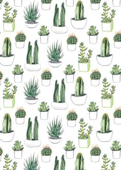 Watercolour drawings of cacti and succulents arranged in a repeat pattern
