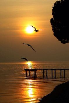 Don't praise the day before sunset ~ Dreamy Nature Before Sunset, Amazing Sunsets, Amazing Nature, Beautiful World, Beautiful Places, Amazing Places, Beautiful Sunrise, Beautiful Beach, Belle Photo
