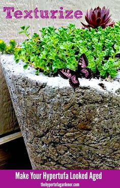 Texturizing Hypertufa to Look Ancient, Make these garden planters from cement and you will always have a new planter! Concrete Crafts, Concrete Projects, Concrete Garden, Concrete Art, Concrete Furniture, Polished Concrete, Modern Furniture, Concrete Planters, Diy Planters