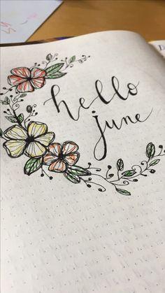 Hello june, theme divider♥️