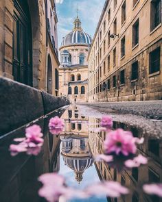 Travel photography wallpaper paris france Ideas for 2019 Beautiful World, Beautiful Places, Beautiful Pictures, Paris France, France Europe, Paris City, Exotic Places, Paris Travel, Travel City