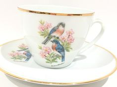 Bareuther Bavaria Tea Cup and Saucer, Bluebirds Tea Cup, German Tea Cups, Tea Set, Bavaria Germany, Vintage Tea Cups, Antique Teacups by AprilsLuxuries on Etsy https://www.etsy.com/ca/listing/185006904/bareuther-bavaria-tea-cup-and-saucer