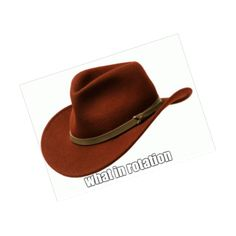 New party member! Tags: memes hat rotation what in tarnation hat meme