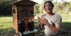 Совершенно неожиданно, рекордсменом среди проектов краудфандинг-платформы IndieGoGo стал совместный проект сына и отца, разработавших уникальный концепт пчелиного улья.Его особенность состоит в том,