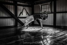 #yoga, #moyo, #inspiration  Many thanks to #joelongophotography