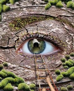 Free source, Eye (so beautiful climbing into the depths of the soul)