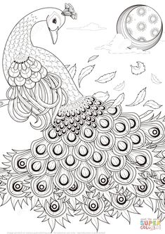 Graceful Peacock Coloring Page From Peacocks Category Select 26388 Printable Crafts Of Cartoons Nature Animals Bible And Many More