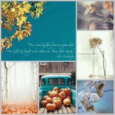 How beautifully leaves grow old. How full of light and colour are their last days. #moodboard #mosaic #collage #inspirationboard #byJeetje♡