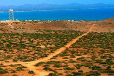 Pueblo Del Cabo Vineyard, Country Roads, Outdoor, Cabo De La Vela, Light House, Candles, Outdoors, Vine Yard, Vineyard Vines